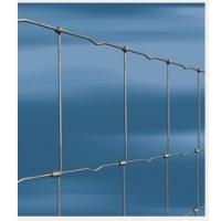 Rede Ovelheira / RAL 100 x 8 x 15 (50 Mts)