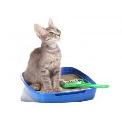 PET - Wc p/ Gatos