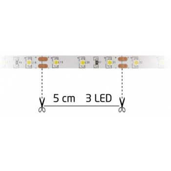 FITA 300 LEDS 12V - 5 MTS