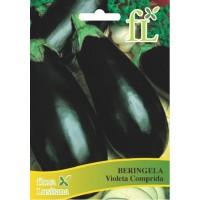 Beringela Violeta Comprida - 10 gr