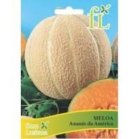 Meloa Ananás da América - 10 gr